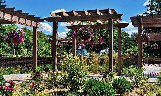 Les meilleures tendances du jardinage 2019